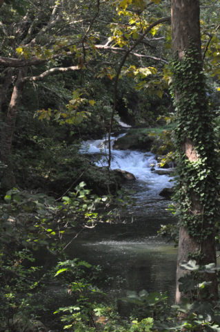 The Argens river is one of two that meet in Carcès.