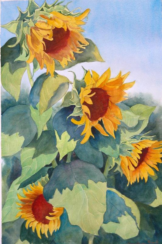 Sunflowers, by Karen Russell.